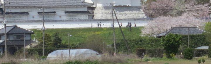 第35回千葉再発見の旅・千葉県最北端の城下町「関宿」の歴史探訪の旅【開催報告】